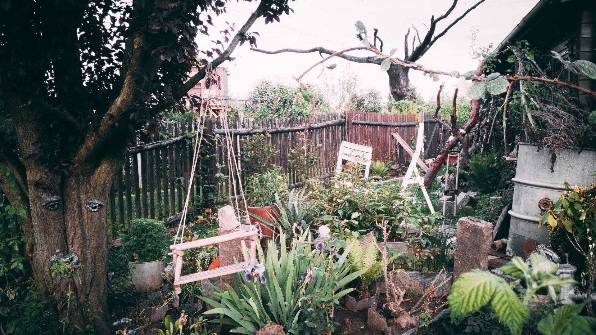 """Tag 291 - Strebergarten // """"Einen Garten zu pflanzen bedeutet an Morgen zu glauben"""" - Audrey Hepburn // """"To plant a garden is to believe in tomorrow"""" - Audrey Hepburn"""