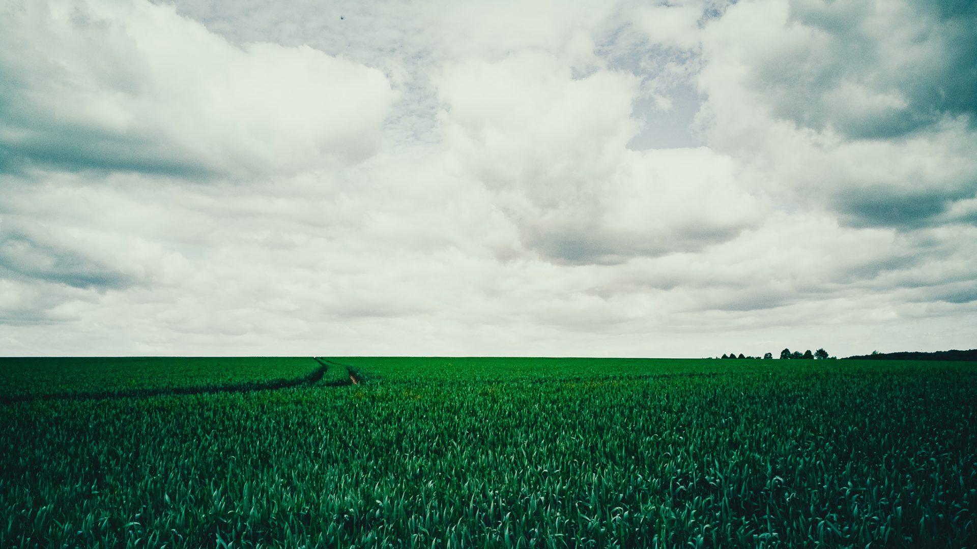 """Tag 296 - Landwirtschaft // """"Landwirtschaft und Industrie gehören zusammen und dürfen sich nicht entgegenarbeiten in der Gesetzgebung."""" - Otto von Bismarck"""