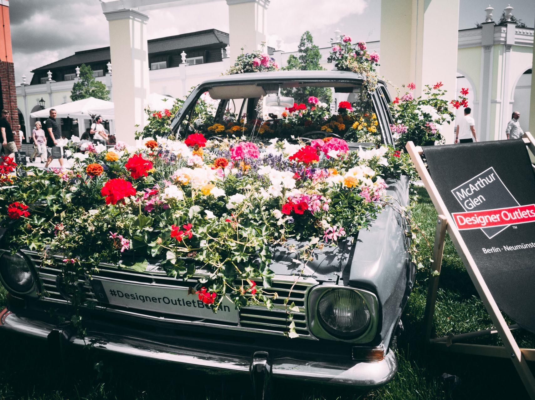 """Tag 313 - Blumen // """"Blumen sind die schönen Worte und Hieroglyphen der Natur, mit denen sie uns andeutet, wie lieb sie uns hat."""" - Johann Wolfgang von Goethe"""