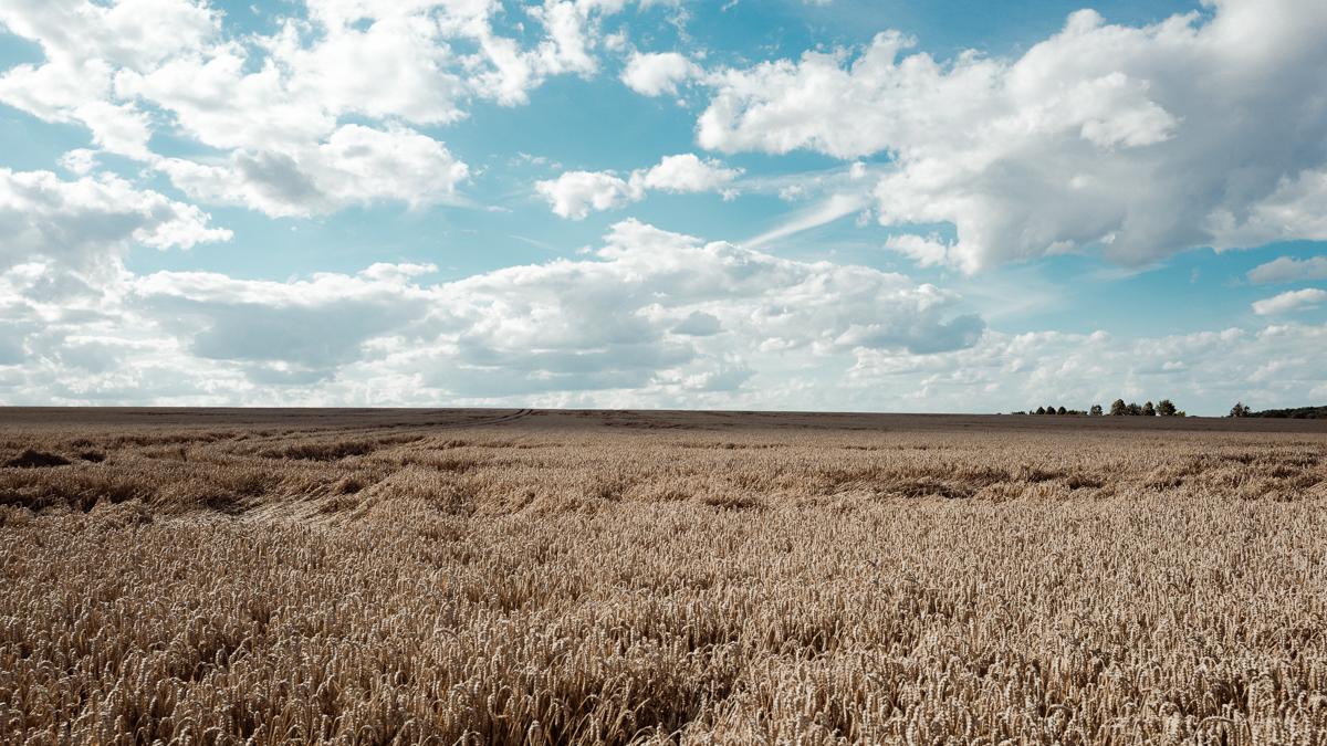 """Tag 361 - Wolken // """"Optimismus ist die Fähigkeit, den blauen Himmel hinter den Wolken zu ahnen."""" - Madeleine Robinson"""