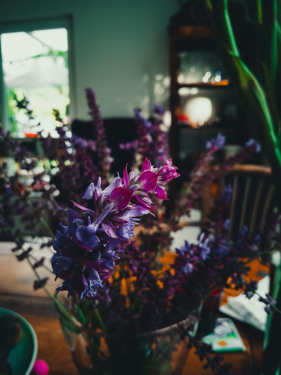 """Tag 357 - Purple // """"Es ist heilsam, sich mit farbigen Dingen zu umgeben. Was das Auge freut, erfrischt den Geist, und was den Geist erfrischt, erfrischt den Körper."""" - Prentice Mulford"""